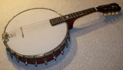 George Washburn Banjo Mandolin
