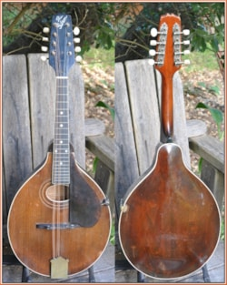 1923 Gibson A-2 Snakehed