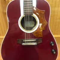 1966 Hoyer 12 String Acoustic Electric