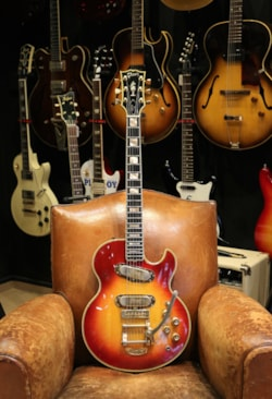 1972 Gibson L5s