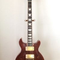 2005 Gibson Les Paul Standard Double Cut