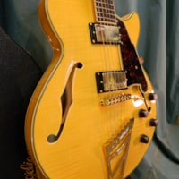 2015 D'Angelico Excel EX-SS
