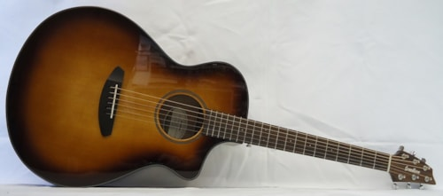 2019 Breedlove Discovery Concert CE