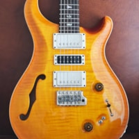 2019 Paul Reed Smith Special 22 Semi-Hollow Limited