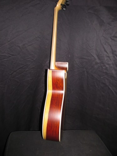2020 AG FS29A Natural- Cocobolo back and sides.