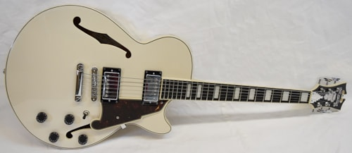 2020 D'Angelico Premier SS Champagne