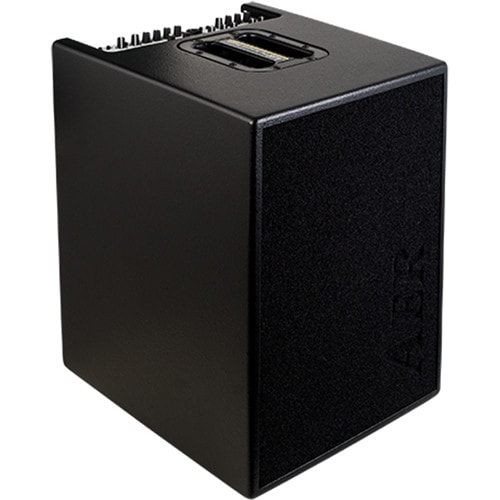 AER 2x100W Acoustic Bass Combo Amp 2 Chan w/ 4x8 Speaker/ Blac BASIC-PERFORMER-2