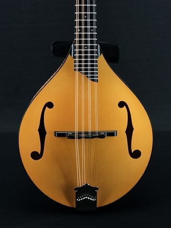 Collings MT A-Style Mandolin in Honey Amber with Gloss Top