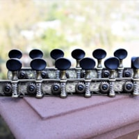 Dell'Arte 12 string guitar tuning heads