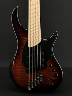 Dingwall Combustion 5 in Vintageburst with Quilt Maple Top