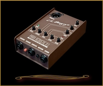 L.R. Baggs LR Baggs Para DI Acoustic Direct Box & Preamp with 5-band EQ