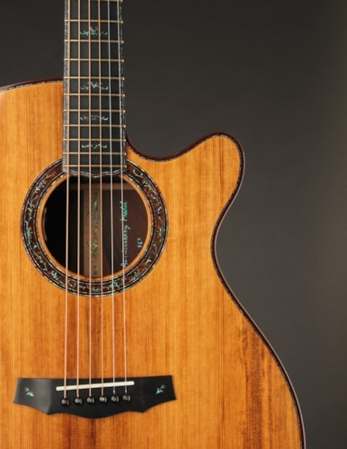 Laurie Williams 20th Anniversary Tui Model (USED, 2012)