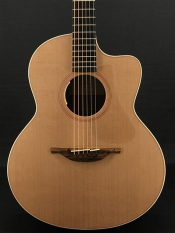Lowden F-22C with LR Baggs Anthem Electronics