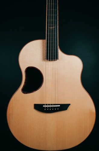 McPherson MG-4.5XP in Macassar Ebony with Red Spruce Top