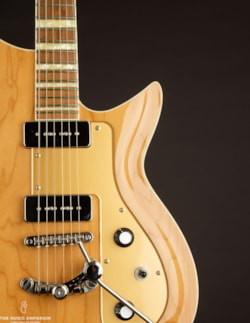 Rivolta Guitars Combinata XVII Acero