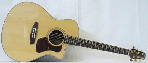 Walden CG 600 CE Natural Gloss, Brand New, Call For Price!
