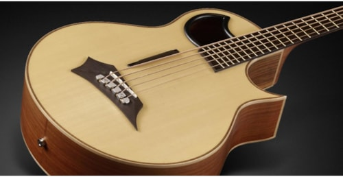 Warwick Alien 5-string Acoustic Electric Bass, Authorized Dealer, Free Shipping